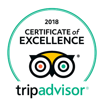 best excursion of tripadvisor