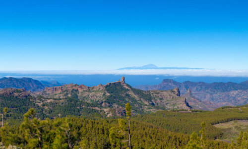 Excursion Gran Canaria Highlights - Gran Canaria
